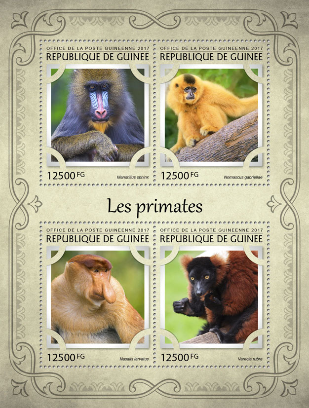 Monkeys - Issue of Guinée postage stamps