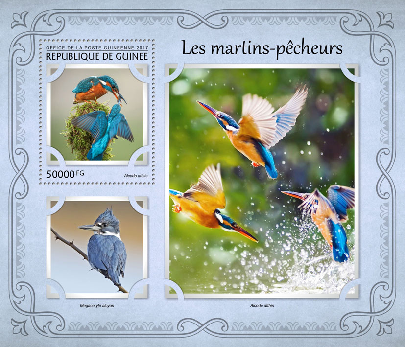 Kingfishers - Issue of Guinée postage stamps