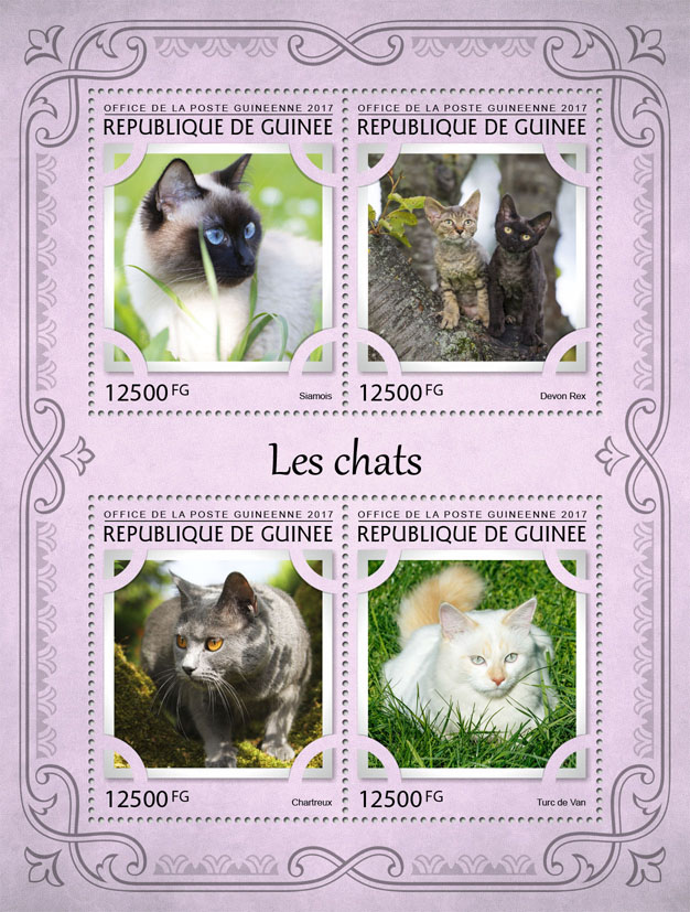 Cats - Issue of Guinée postage stamps