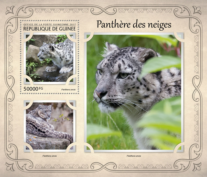 Snow leopard - Issue of Guinée postage stamps