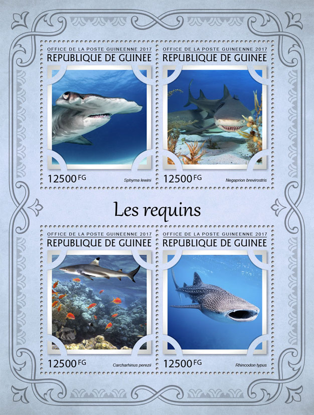 Sharks - Issue of Guinée postage stamps