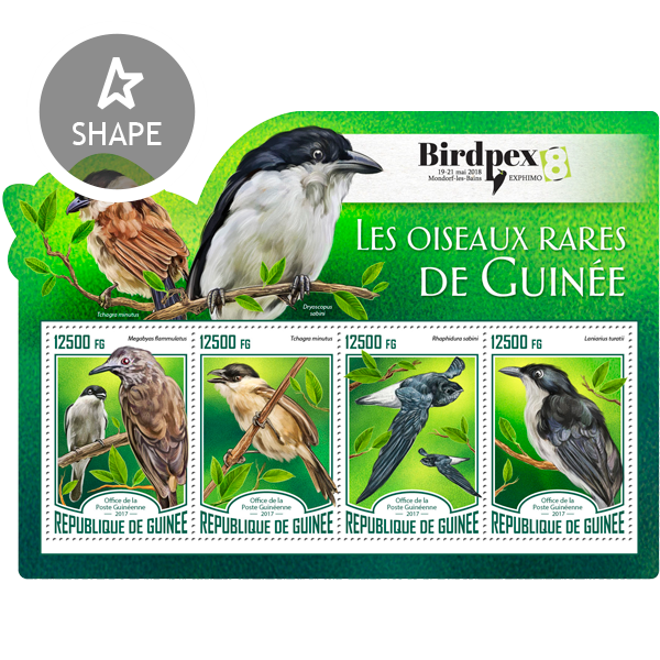 Rare birds - Issue of Guinée postage stamps