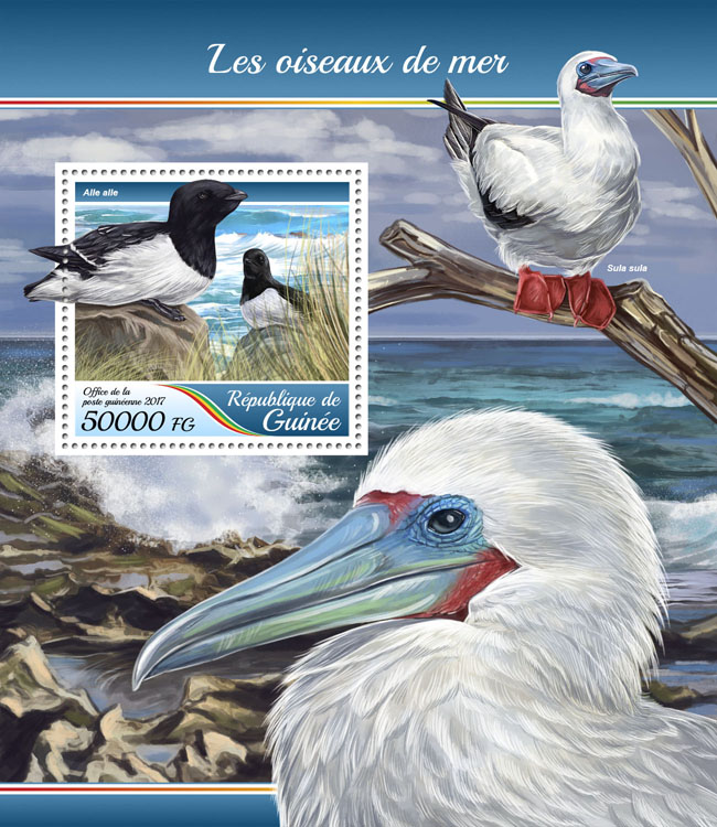 Sea birds - Issue of Guinée postage stamps
