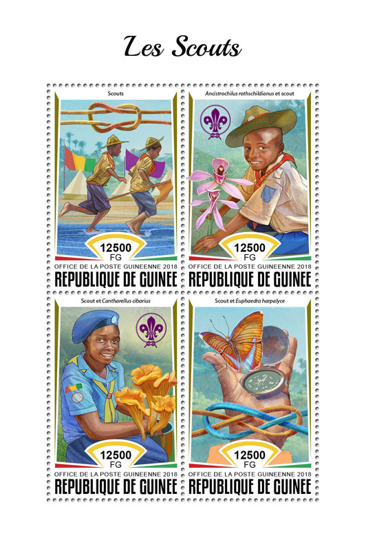 Scouts - Issue of Guinée postage stamps