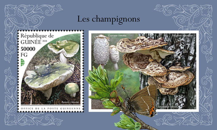 Mushrooms - Issue of Guinée postage stamps