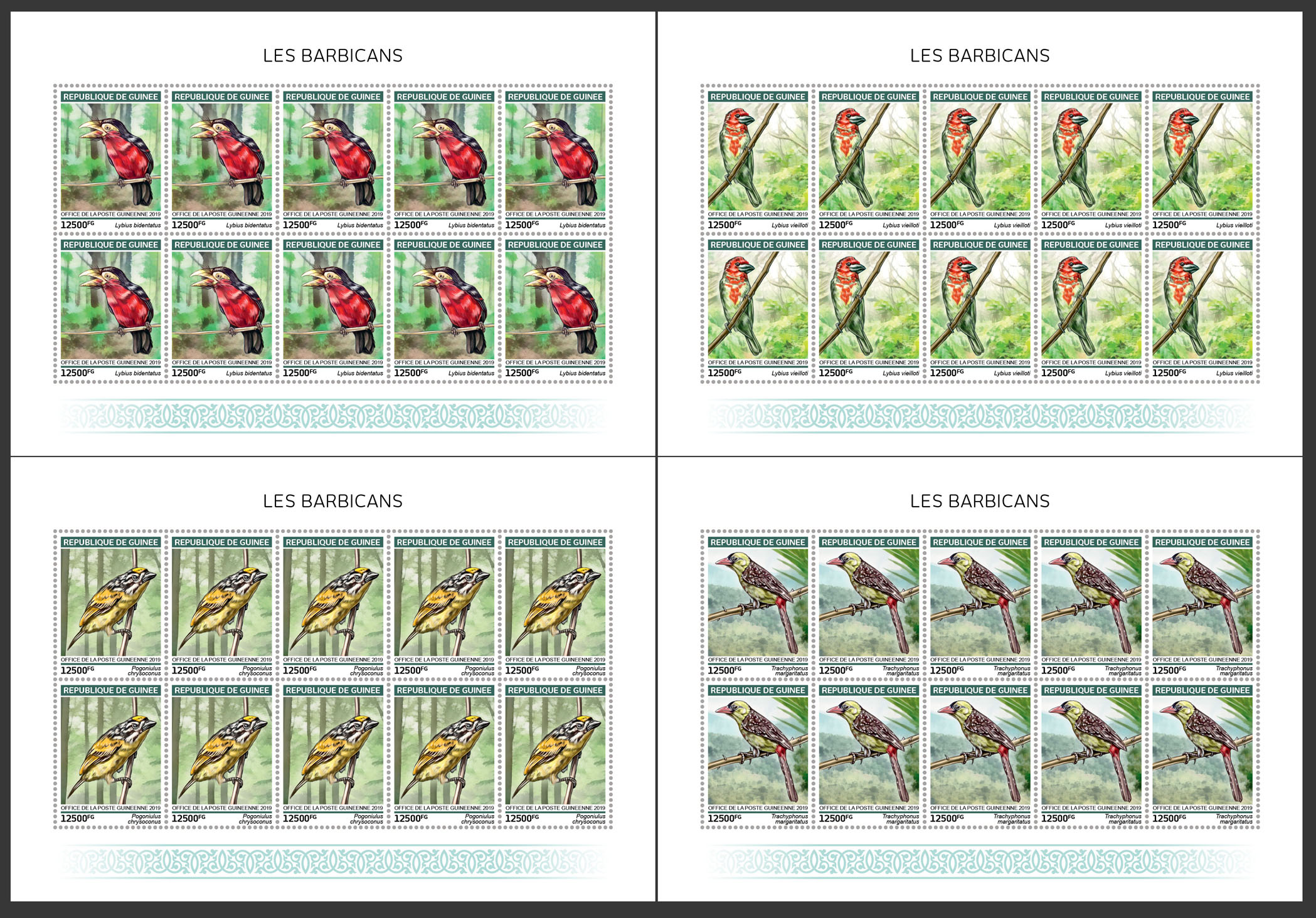 Barbets - Issue of Guinée postage stamps