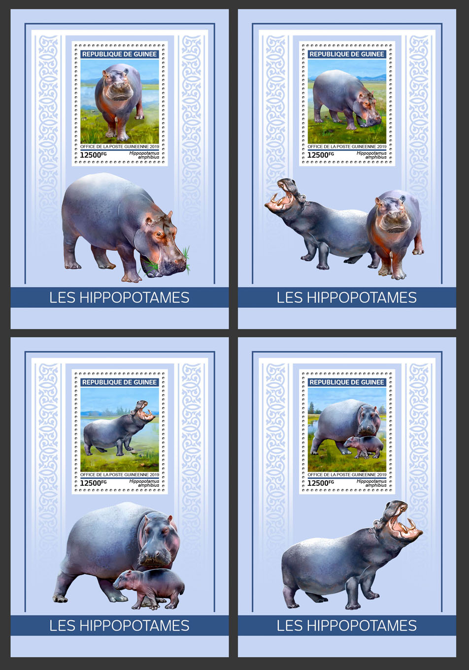 Hippopotamus - Issue of Guinée postage stamps