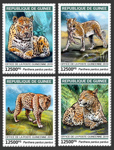 Leopards - Issue of Guinée postage stamps