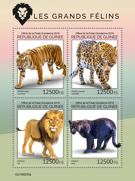 Big cats - Issue of Guinée postage stamps