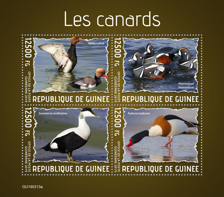 Ducks - Issue of Guinée postage stamps