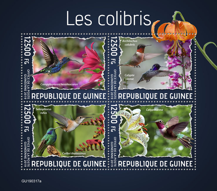 Colibri - Issue of Guinée postage stamps