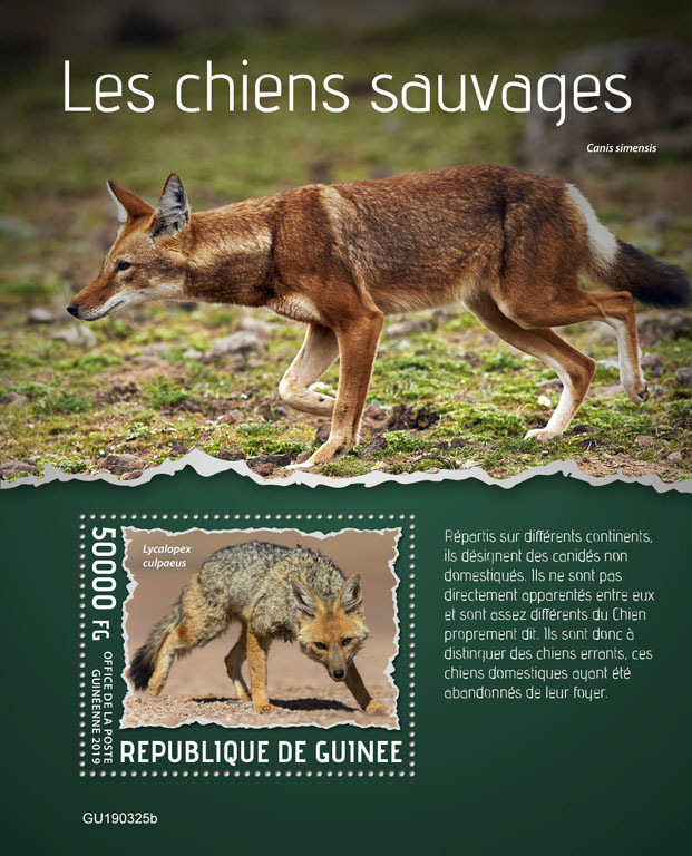 Wild dogs - Issue of Guinée postage stamps