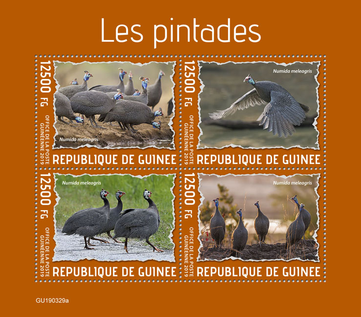 Guineafowls - Issue of Guinée postage stamps
