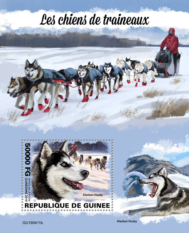Sled dogs - Issue of Guinée postage stamps